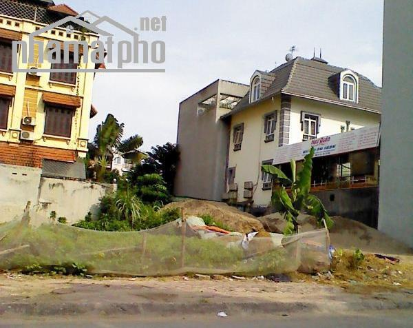 Bán đất đấu giá mặt phố Trần Đăng Ninh kéo dài 175m2 ĐN giá 52tỷ