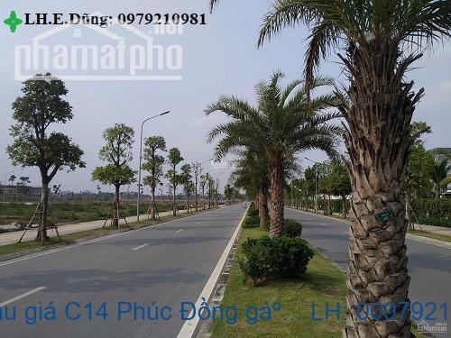 Bán nhà đất đấu giá C14 Phúc Đồng gần savico long biên