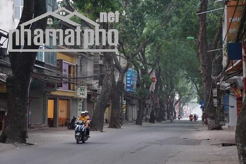 Bán nhà mặt phố Đê La Thanh 80m2x1T MT:4m giá 18tỷ