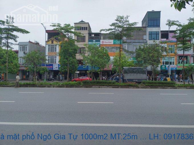 Bán nhà mặt phố Ngô Gia Tự 1000m2 MT:25m giá 120tỷ